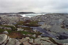 From Peggy's Cove Lookoff